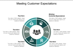 Meeting Customer Expectations Ppt PowerPoint Presentation Layouts Example Cpb