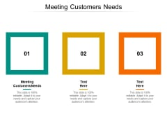 Meeting Customers Needs Ppt PowerPoint Presentation Gallery Information Cpb Pdf