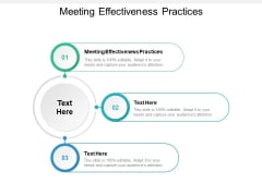 Meeting Effectiveness Practices Ppt PowerPoint Presentation Professional Slides Cpb