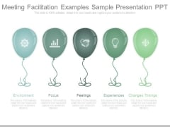 Meeting Facilitation Examples Sample Presentation Ppt