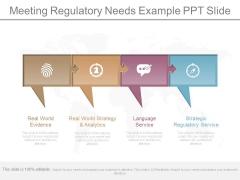 Meeting Regulatory Needs Example Ppt Slide