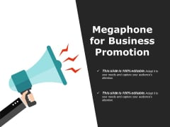 Megaphone For Business Promotion Ppt PowerPoint Presentation Visual Aids Infographics