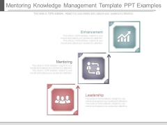 Mentoring Knowledge Management Template Ppt Examples