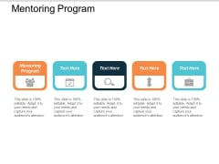 Mentoring Program Ppt Powerpoint Presentation Icon Infographic Template Cpb