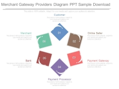 Merchant Gateway Providers Diagram Ppt Sample Download