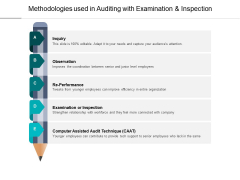 Methodologies Used In Auditing With Examination And Inspection Ppt PowerPoint Presentation Infographics Design Inspiration