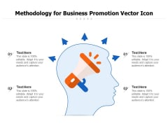 Methodology For Business Promotion Vector Icon Ppt PowerPoint Presentation File Inspiration PDF