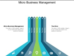Micro Business Management Ppt Powerpoint Presentation Show Graphics Cpb