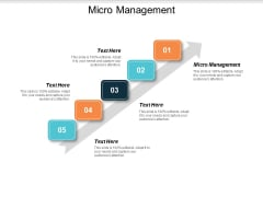 Micro Management Ppt PowerPoint Presentation Gallery Example File Cpb