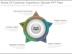 Model Of Customer Experience Sample Ppt Files
