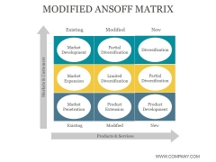 Modified Ansoff Matrix Ppt PowerPoint Presentation Background Images