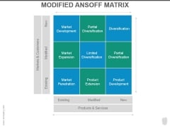 Modified Ansoff Matrix Ppt PowerPoint Presentation Example File