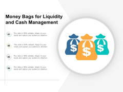 Money Bags For Liquidity And Cash Management Ppt PowerPoint Presentation Infographics Graphics