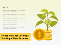 Money Plant For Leverage Funding Of New Business Ppt PowerPoint Presentation Model Objects PDF