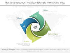 Monitor Employment Practices Example Powerpoint Ideas