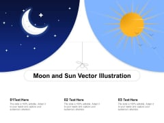 Moon And Sun Vector Illustration Ppt PowerPoint Presentation Gallery Portfolio