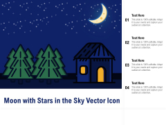 Moon With Stars In The Sky Vector Icon Ppt PowerPoint Presentation Show Infographics