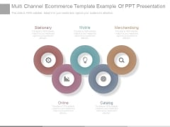 Multi Channel Ecommerce Template Example Of Ppt Presentation