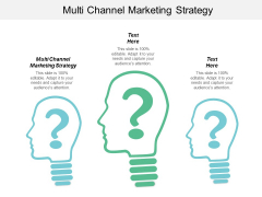 Multi Channel Marketing Strategy Ppt Powerpoint Presentation Infographic Template Designs Cpb