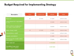 Multi Channel Online Commerce Budget Required For Implementing Strategy Icons PDF