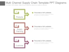 Multi Channel Supply Chain Template Ppt Diagrams