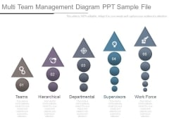Multi Team Management Diagram Ppt Sample File