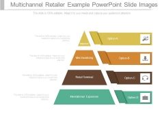 Multichannel Retailer Example Powerpoint Slide Images
