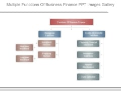 Multiple Functions Of Business Finance Ppt Images Gallery