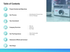 Music Promotion Consultation Table Of Contents Structure PDF