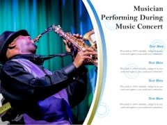 Musician Performing During Music Concert Ppt PowerPoint Presentation Styles Summary PDF