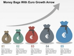 Money Bags With Euro Growth Arrow PowerPoint Templates