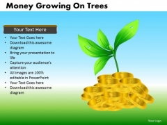 Money Growing On Trees PowerPoint Presentation Templates