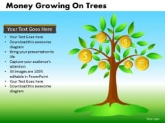 Money Growing On Trees PowerPoint Templates Editable Ppt Slides