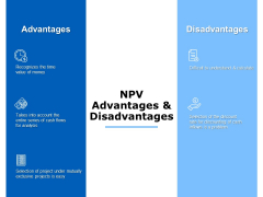 npv advantages and disadvantages ppt powerpoint presentation styles background images
