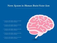 Nerve System In Human Brain Vector Icon Ppt PowerPoint Presentation File Graphics Example PDF