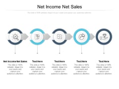 Net Income Net Sales Ppt PowerPoint Presentation Slides Samples Cpb