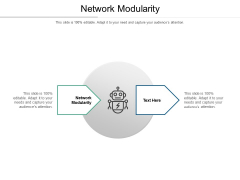 Network Modularity Ppt PowerPoint Presentation Model Graphics Cpb