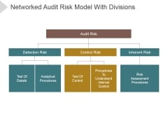Networked Audit Risk Model With Divisions Ppt PowerPoint Presentation Professional