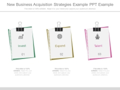 New Business Acquisition Strategies Example Ppt Example