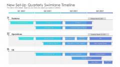 New Set Up Quarterly Swimlane Timeline Brochure