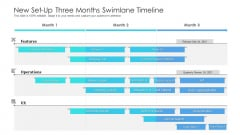 New Set Up Three Months Swimlane Timeline Professional