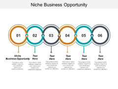 Niche Business Opportunity Ppt PowerPoint Presentation Outline Pictures Cpb