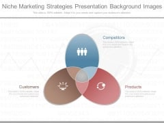Niche Marketing Strategies Presentation Background Images