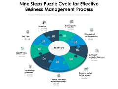 Nine Steps Puzzle Cycle For Effective Business Management Process Ppt PowerPoint Presentation Icon Professional PDF