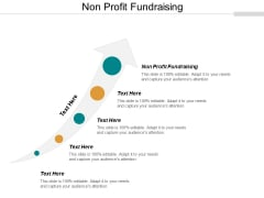 Non Profit Fundraising Ppt PowerPoint Presentation Icon Ideas Cpb