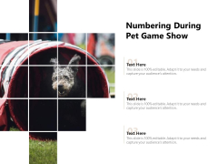 Numbering During Pet Game Show Ppt PowerPoint Presentation Gallery Slides PDF