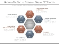 Nurturing The Start Up Ecosystem Diagram Ppt Example