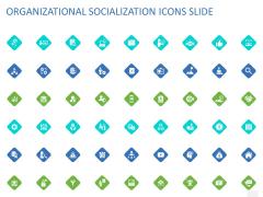 ORGANIZATIONAL SOCIALIZATION ICONS SLIDE Ppt PowerPoint Presentation Professional Infographics PDF