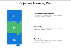 Objectives Marketing Plan Ppt PowerPoint Presentation Ideas Diagrams Cpb