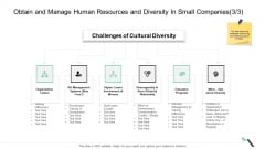 Obtain And Manage Human Resources And Diversity In Small Companies Organization Inspiration PDF
